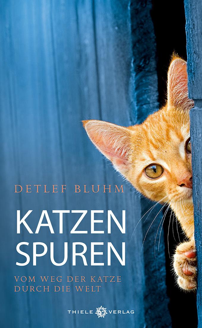 Detlef Bluhm Katzenspuren